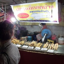 100_1169-chiangmai-street market